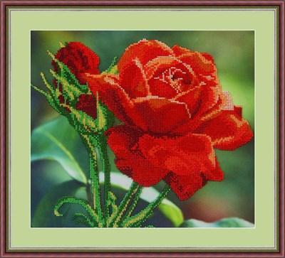 Набор для вышивания бисером «Красная роза» - фото 4635